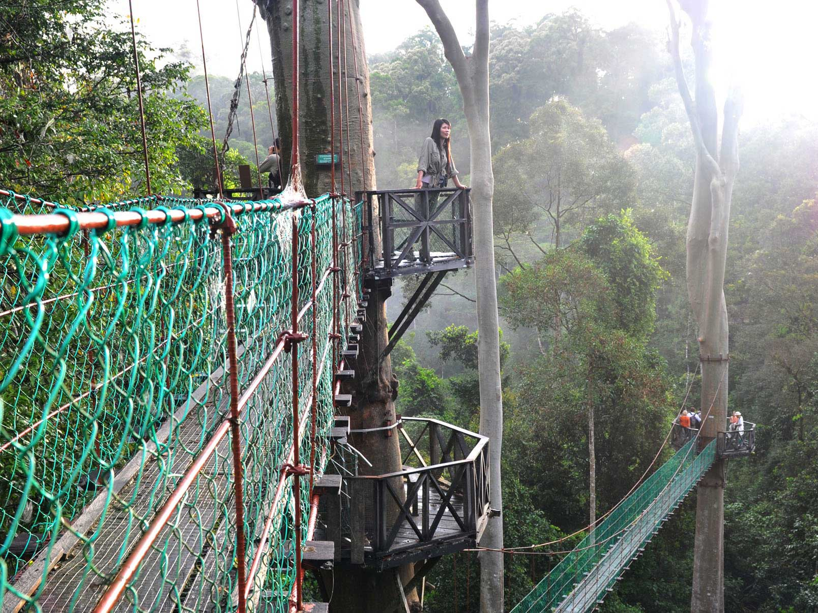 & Danum Valley 3D2N Tour | Borneo Adventure